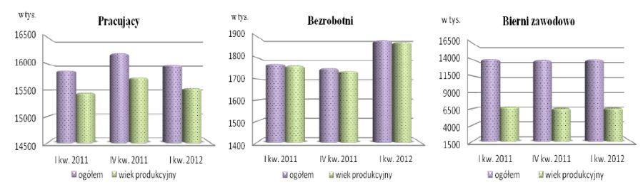 Aktywnosc Ekonomiczna Ludnosci I Iii 2012 Egospodarka Pl Raporty