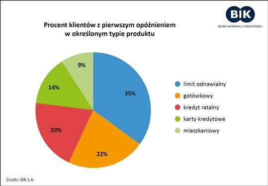 Kredyty gospodarstw domowych: 6,9 mln Polaków spłaca więcej niż jeden kredyt