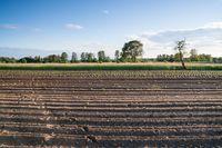 Agencja Nieruchomości Rolnych w 2015 r.