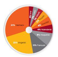 SSC/BPO - najpopularniejsze języki