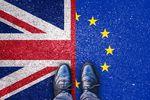 Brexit. Wielka Brytania odporna na wstrząsy?