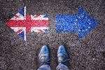 Brexit a polskie firmy założone w Wielkiej Brytanii