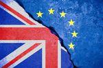 Brexit stał się faktem. Co dalej ze złotym?