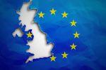Krajobraz po Brexit. Co mówią Polacy z UK?
