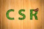 Działania CSR - jak funkcjonują w polskich firmach?