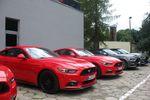 Ford Mustang – w końcu jest