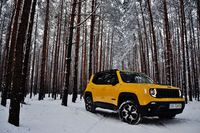 Jeep Renegade 2.0 MJD AT9 4x4 Trailhawk