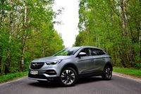 Opel Grandland X 1.2 Turbo AT Ultimate - z przodu