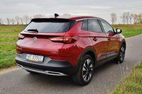 Opel Grandland X 1.5 Turbo D AT8 Elite - z tyłu