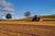 Ulgi i zwolnienia podatkowe w podatku rolnym