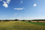 Wrzesień miesiącem podatku od nieruchomości, leśnego i rolnego