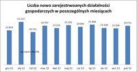 Liczba nowo zarejestrowanych działalności gospodarczych w poszczególnych miesiącach