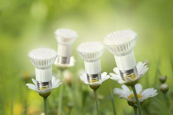 Lampy LED: na to musisz zwrócić uwagę przy wyborze