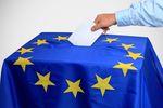 Wybory do PE. Poznaj eurosceptyków