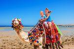 Na Wielkanoc dzieci pojadą do Egiptu i Turcji