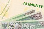 Dłużnicy alimentacyjni winni są państwu ponad 8 mld zł