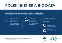 Polski biznes a Big Data