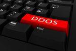 Ataki DDoS, czyli koszty liczone w milionach