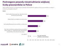 Postrzegane powody niezatrudniania większej liczby pracowników w Polsce