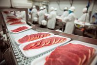 Przetwarzanie mięsa