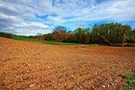 Budowa domu na działce rolnej. Łatwiej o kupno gruntu?