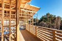 """""""Mieszkanie Plus"""" tchnie życie w drewniane budownictwo?"""