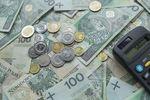 Polski budżet domowy w coraz lepszej formie