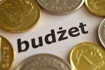 Budżet państwa 2017: wady i zalety