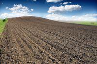 Ceny ziemi rolnej w 2013