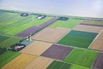 Ceny ziemi rolnej w I kw. 2013