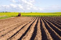 Ceny ziemi rolnej w II kw. 2013