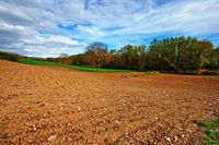 Ceny ziemi rolnej w III kw. 2013