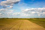 Duże działki rolne drożeją szybciej