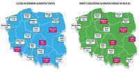 Liczba dłużników alimentacyjnych i kwota zadłużenia - miasta