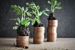 Inwestowanie pieniędzy = cierpliwość + dywersyfikacja portfela?