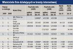 E-biznes w Polsce: kondycja finansowa 2009