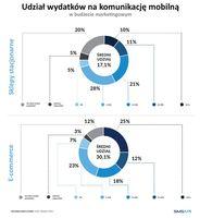 Udział wydatków na komunikację mobilną