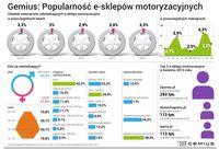 Popularność e-sklepów motoryzacyjnych