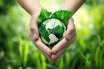 Europejczycy dbają o środowisko naturalne