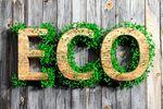 Ford - najbardziej ekologiczna marka na świecie