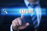 Sektor MŚP będzie eksportować, ale...