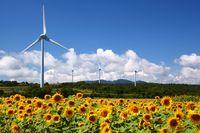 Energetyka wiatrowa w Polsce: bariery rozwoju