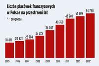 Franczyza w Polsce 2013