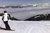 Free ski: dokąd jechać i za ile?