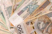 Dotacje unijne: jakich szukają Polacy?