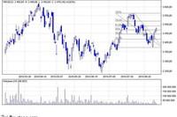 Największe spółki giełdowe VIII 2010