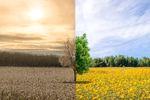 Sorry, taki mamy klimat, czyli globalne zagrożenia 2019 [© sompong_tom - Fotolia.com]