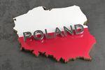 Rozwój gospodarczy Polski to sukces, ale reformy konieczne