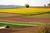 Działka rolna tylko dla rolników