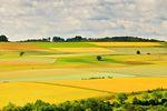 Już za dwa dni obrót ziemią rolną będzie ograniczony